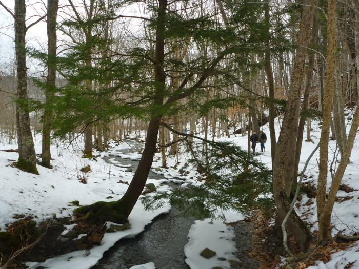 Walking down in Kniffen's Hollow, Bear River.