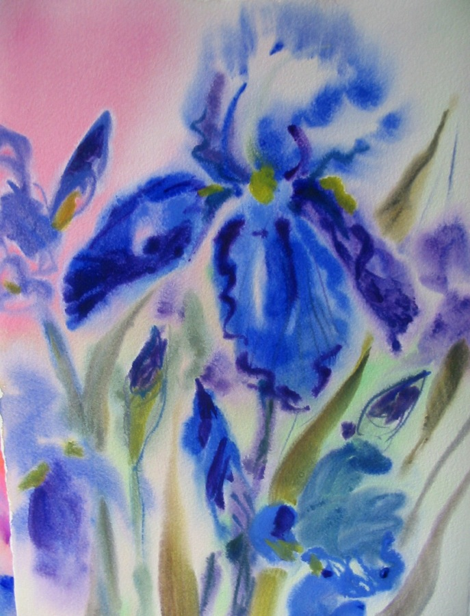 Iris, watercolour © Flora Doehler,  1997? This is my all time favorite iris painting.  (sold)