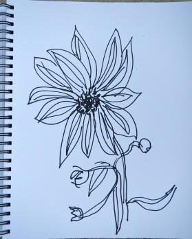Drawing ©Flora Doehler, 2016