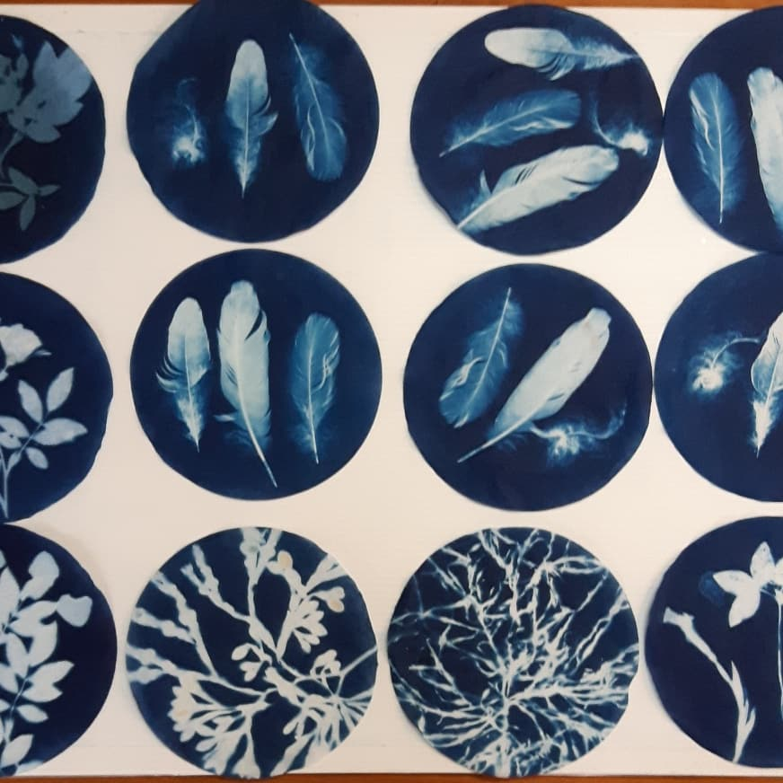 A Chance to Join a Printmaking Studio in Annapolis Royal – meeting Jan 19, 2020