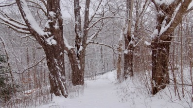 Bear River snow - 3